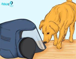 بازی کردن حیوان با جاروبرقی
