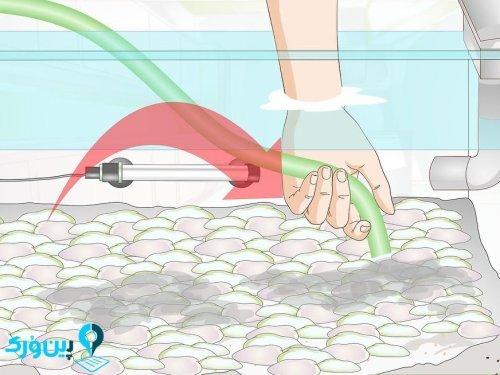تمیز کردن ماسه های آکواریومی